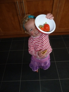 collecting strawberries