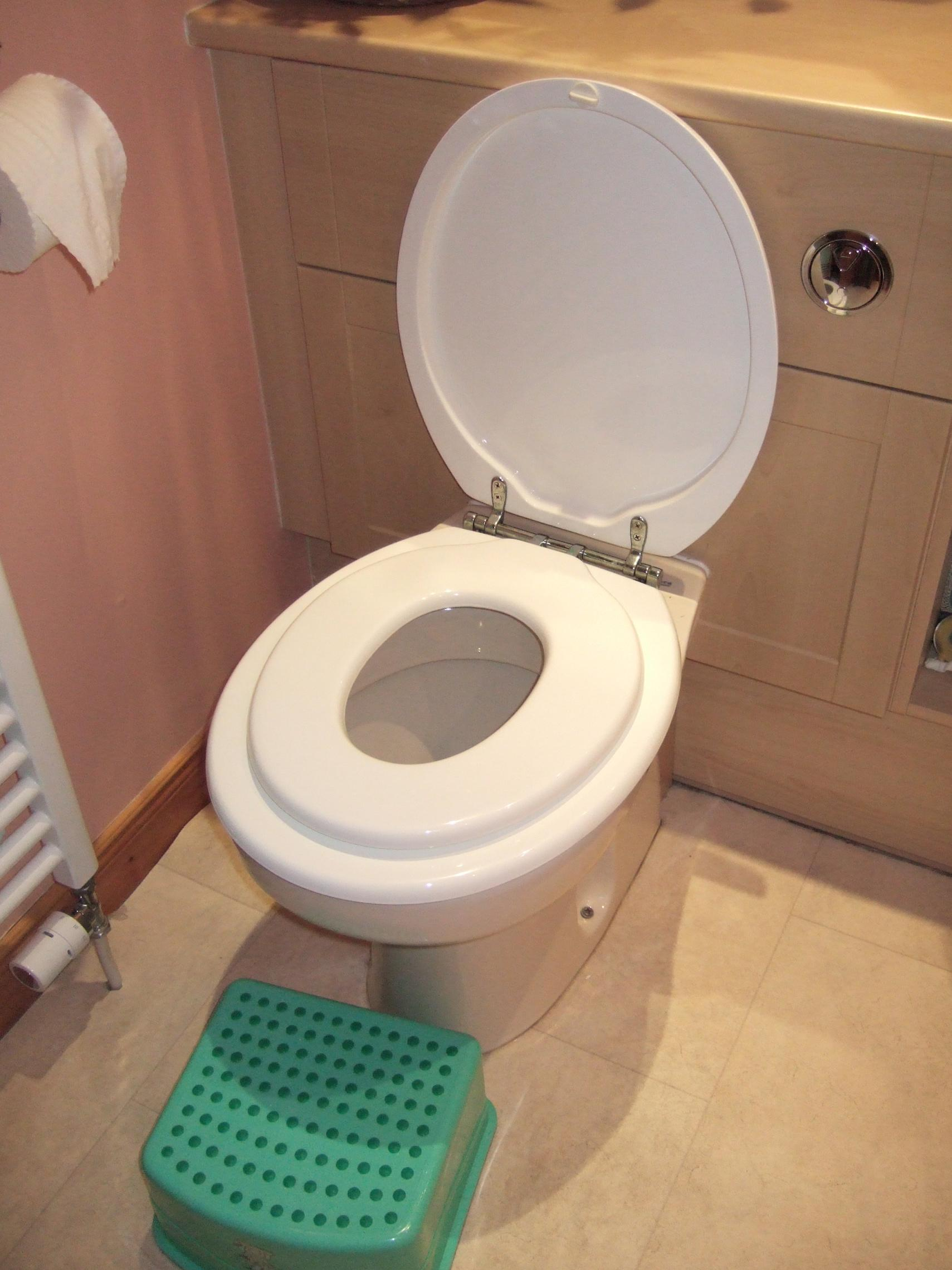This is the fancy toilet seat got 2 lids to cope with little and big