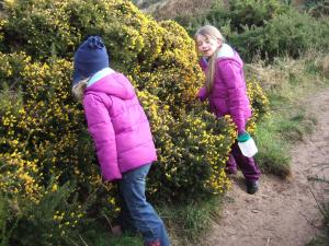 March 3 - first smell of the gorse!