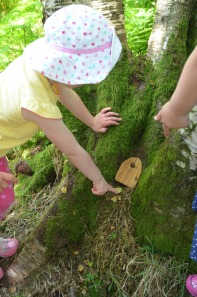 We found 12 fairy doors like this